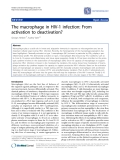 "Báo cáo y học: "" The macrophage in HIV-1 infection: From activation to deactivation?"""