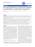 """Báo cáo y học: """"HIV-1 Vpu and HIV-2 Env counteract BST-2/tetherin by sequestration in a perinuclear compartment"""""""