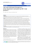 """Báo cáo y học: """"Cell cycle G2/M arrest through an S phase-dependent mechanism by HIV-1 viral protein R."""""""