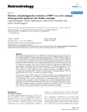 """Báo cáo y học: """"Genetic and phylogenetic evolution of HIV-1 in a low subtype heterogeneity epidemic: the Italian example"""""""