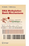 DNA Methylation: Basic Mechanisms - Part 1