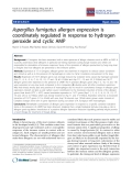 "Báo cáo y học: ""Aspergillus fumigatus allergen expression is coordinately regulated in response to hydrogen peroxide and cyclic AMp"""