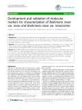 "Báo cáo y học: ""Development and validation of molecular markers for characterization of Boehmeria nivea var. nivea and Boehmeria nivea var. tenacissima"""