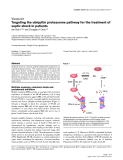 "Báo cáo y học: ""Targeting the ubiquitin proteasome pathway for the treatment of septic shock in patients"""