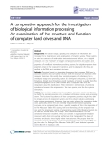 """Báo cáo y học: """"A comparative approach for the investigation of biological information processing: An examination of the structure and function of computer hard drives and DNA"""""""