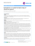 "Báo cáo y học: "" Epinephrine: Is it really the black sheep of vasoactive agents"""