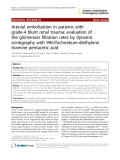 "Báo cáo y học: ""Arterial embolization in patients with grade-4 blunt renal trauma: evaluation of the glomerular filtration rates by dynamic scintigraphy with 99mTechnetium-diethylene triamine pentacetic acid"""