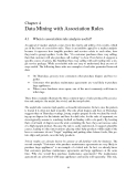 INTRODUCTION TO KNOWLEDGE DISCOVERY AND DATA MINING - CHAPTER 4