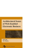 Architectural Issues of Web−Enabled Electronic Business phần 1