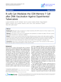 "Báo cáo sinh học: ""B cells Can Modulate the CD8 Memory T Cell after DNA Vaccination Against Experimental Tuberculosis"""