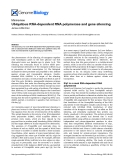 "Báo cáo y học: "" Ubiquitous RNA-dependent RNA polymerase and gene silencing"""