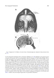 Psychiatry for Neurologists - part 9
