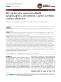 Akt regulates the expression of MafK, synaptotagmin I, and syntenin-1, which play roles in neuronal function
