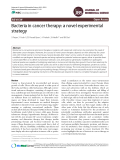 Bacteria in cancer therapy: a novel experimental strategy