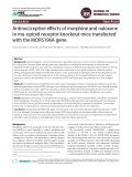 Antinociceptive effects of morphine and naloxone in mu-opioid receptor knockout mice transfected with the MORS196A gene