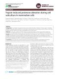 Trypsin-induced proteome alteration during cell subculture in mammalian cells