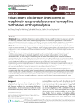 Enhancement of tolerance development to morphine in rats prenatally exposed to morphine, methadone, and buprenorphine