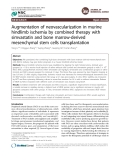 Augmentation of neovascularization in murine hindlimb ischemia by combined therapy with simvastatin and bone marrow-derived mesenchymal stem cells transplantation