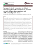 """Báo cáo y học: """" Resveratrol retards progression of diabetic nephropathy through modulations of oxidative stress, proinflammatory cytokines, and AMP-activated protein kinase"""""""