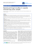 """Báo cáo y học: """"Bacterial and fungal microflora in surgically removed lung cancer samples."""""""