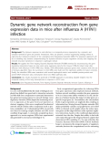 """Báo cáo y học: """" Dynamic gene network reconstruction from gene expression data in mice after influenza A (H1N1) infection."""""""