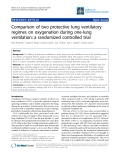 "Báo cáo y học: ""Comparison of two protective lung ventilatory regimes on oxygenation during one-lung ventilation: a randomized controlled trial"""