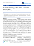 """Báo cáo y học: """"A variant branching pattern of the Aortic Arch: a case report"""""""