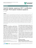 "báo cáo khoa học: "" Catechin hydrate suppresses MCF-7 proliferation through TP53/Caspase-mediated apoptosis"""