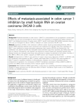 """báo cáo khoa học: """" Effects of metastasis-associated in colon cancer 1 inhibition by small hairpin RNA on ovarian carcinoma OVCAR-3 cells"""""""