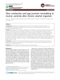 "Báo cáo y học: ""Slow conduction and gap junction remodeling in murine ventricle after chronic alcohol ingestion"""