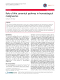 """báo cáo khoa học: """"Role of Wnt canonical pathway in hematological malignancies"""""""