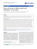"""Báo cáo y học: """"Clear cell variant of diffuse large B-cell lymphoma: a case report."""""""