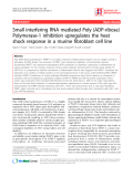 "Báo cáo y học: ""Small interfering RNA mediated Poly (ADP-ribose) Polymerase-1 inhibition upregulates the heat shock response in a murine fibroblast cell line"""