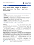 "Báo cáo y học: ""Aorto-venous fistula between an abdominal aortic aneurysm and an aberrant renal vein: a case report"""
