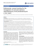 """báo cáo khoa học: """" Endovascular covered stenting for the management of post-percutaneous nephrolithotomy renal pseudoaneurysm: a case report"""""""