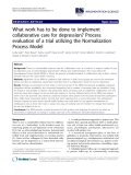 "Báo cáo y học: "" What work has to be done to implement collaborative care for depression? Process evaluation of a trial utilizing the Normalization Process Model"""