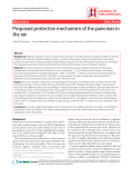 """Báo cáo y học: """"Proposed protective mechanism of the pancreas in the rat."""""""