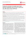 "Báo cáo y học: ""Endotoxin-activated microglia injure brain derived endothelial cells via NF-B, JAK-STAT and JNK stress kinase pathways"""