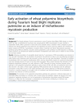 """báo cáo khoa học: """" Early activation of wheat polyamine biosynthesis during Fusarium head blight implicates putrescine as an inducer of trichothecene mycotoxin production"""""""