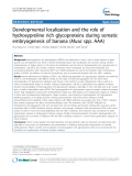 """báo cáo khoa học: """" Developmental localization and the role of hydroxyproline rich glycoproteins during somatic embryogenesis of banana (Musa spp. AAA)"""""""
