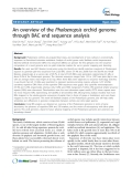 """báo cáo khoa học: """" An overview of the Phalaenopsis orchid genome through BAC end sequence analysis"""""""