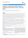 """báo cáo khoa học: """"Depletion of the heaviest stable N isotope is associated with NH4+/NH3 toxicity in NH4+-fed plants"""""""