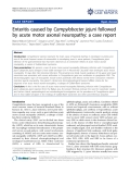 """Báo cáo y học: """" Enteritis caused by Campylobacter jejuni followed by acute motor axonal neuropathy: a case report"""""""