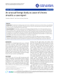 """Báo cáo y học: """"An unusual foreign body as cause of chronic sinusitis: a case report."""""""