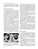 Fundamentals of Clinical Ophthalmology (part 8)