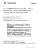 """Báo cáo y học: """"Extramedullary plasmacytoma of the pancreas as an uncommon cause of obstructive jaundice: a case report"""""""