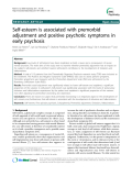 "Báo cáo y học: "" Self-esteem is associated with premorbid adjustment and positive psychotic symptoms in early psychosis"""