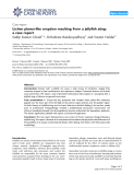 "Báo cáo y học: ""Lichen planus-like eruption resulting from a jellyfish sting: a case report"""