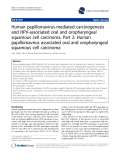 "báo cáo khoa học: ""  Human papillomavirus-mediated carcinogenesis and HPV-associated oral and oropharyngeal squamous cell carcinoma. Part 2: Human papillomavirus associated oral and oropharyngeal squamous cell carcinoma"""