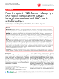 "Báo cáo y học: "" Protection against H1N1 influenza challenge by a DNA vaccine expressing H3/H1 subtype hemagglutinin combined with MHC class IIrestricted epitopes"""